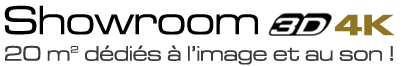 logo showroom3d
